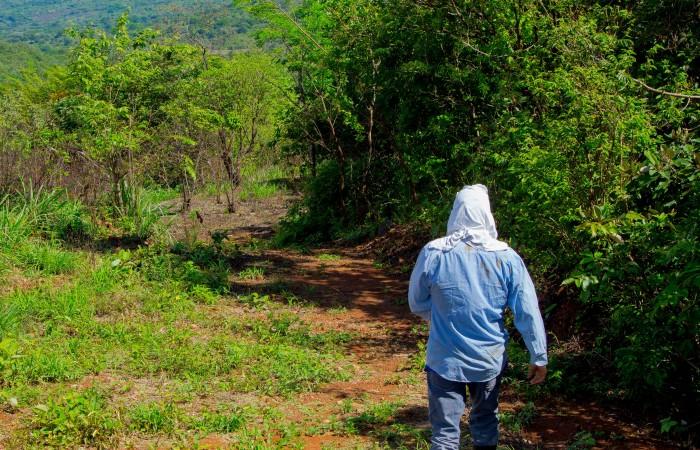 Programa de agricultura y acuicultura en Reserva Forestal Fortuna, finalista a los Global Energy Awards